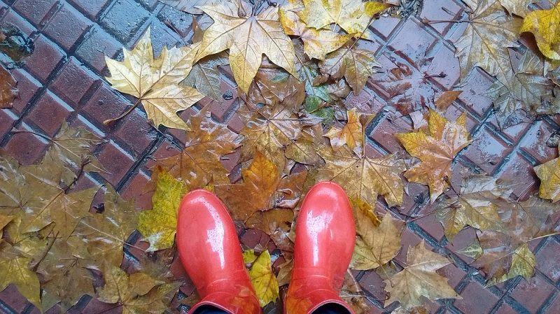 buenos aires no outono